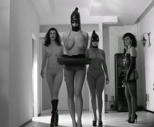 Best voyeur cam porn