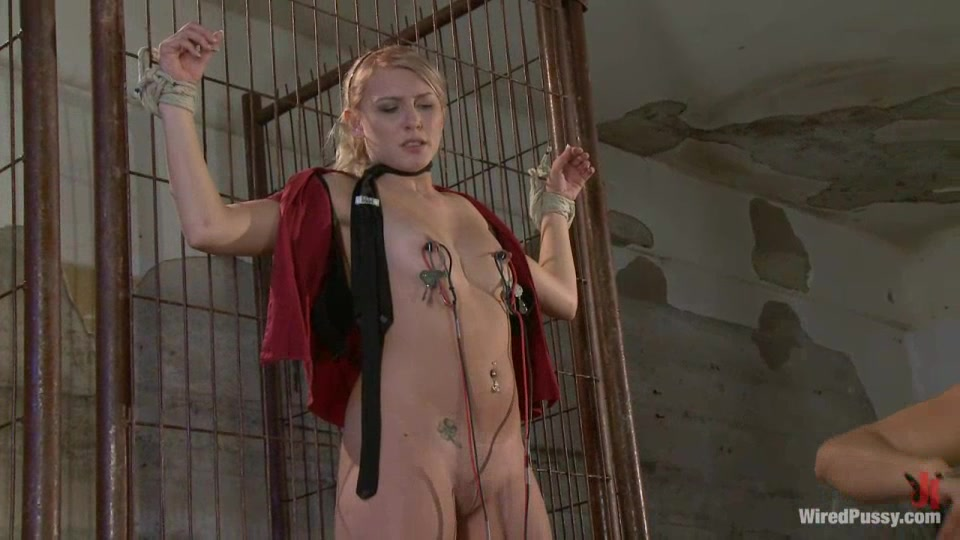 Entangled Blonde Got Her Nipples Clamp-Wired-3386