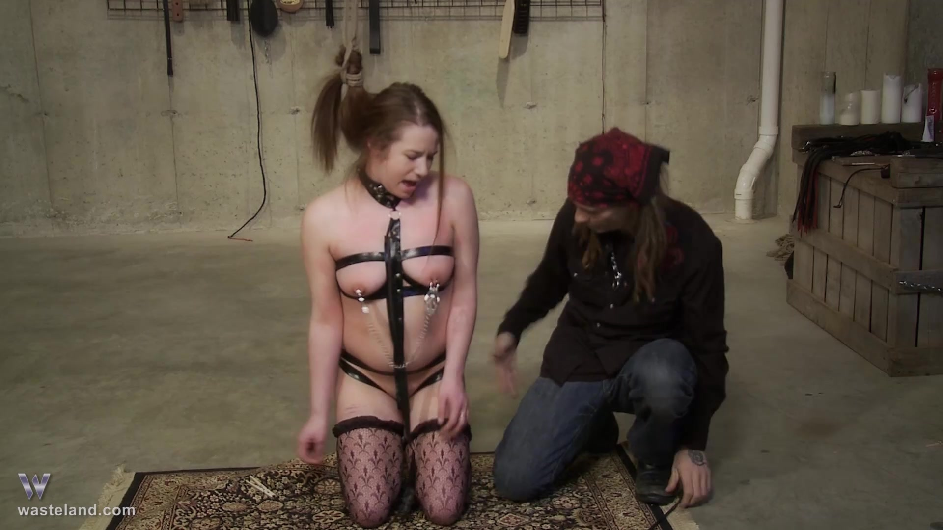 Cock Electrotorture
