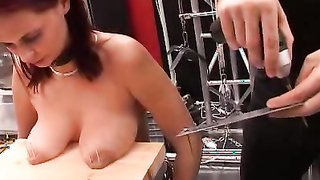 Nail and hammer pussy torture