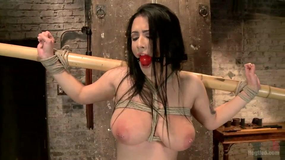 filmvz tied up hotties